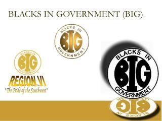 BLACKS IN GOVERNMENT (BIG)