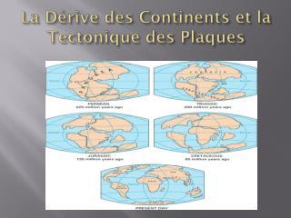 La D é rive des Continents et la  Tectonique  des Plaques