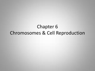 Chapter 6 Chromosomes & Cell Reproduction