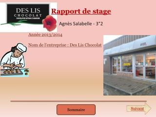 Rapport de stage Agn�s Salabelle - 3�2 Ann�e 2013/2014