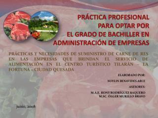 PRÁCTICA PROFESIONAL  PARA OPTAR POR  EL GRADO DE BACHILLER EN ADMINISTRACIÓN DE EMPRESAS