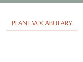 Plant Vocabulary