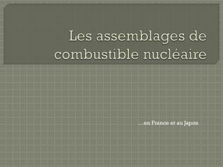 Les assemblages de combustible nucléaire