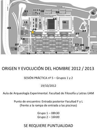 ORIGEN Y EVOLUCIÓN DEL HOMBRE 2012 / 2013