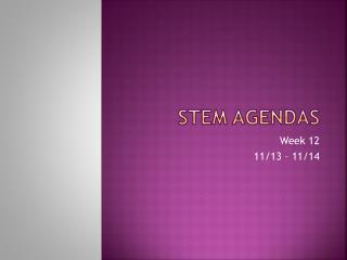 STEM Agendas