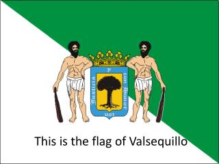 This is the flag of Valsequillo