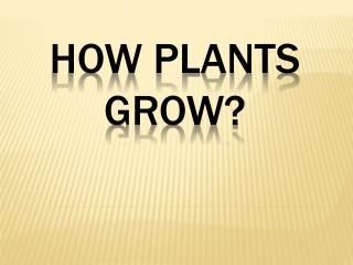 HOW PLANTS GROW?