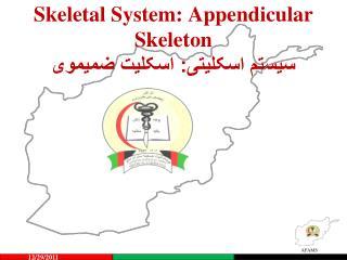 Skeletal System:  Appendicular  Skeleton سیستم اسکلیتی: اسکلیت ضمیموی
