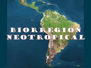 Biorregión Neotropical