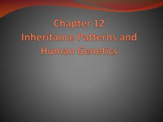 Chapter 12 Inheritance Patterns and Human Genetics
