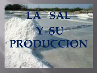 LA   SAL   Y  SU PRODUCCION