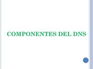 COMPONENTES DEL DNS