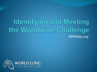 Identifying  and Meeting the Worldwide Challenge