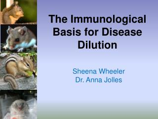The Immunological Basis for Disease Dilution