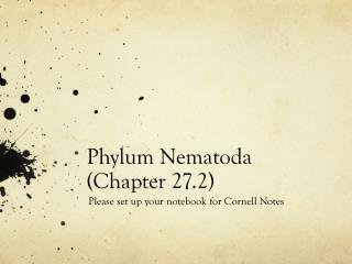 Phylum  Nematoda  (Chapter 27.2)