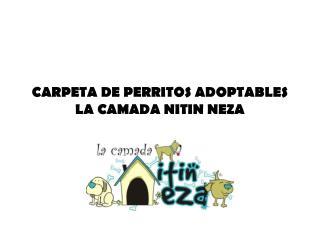 CARPETA DE PERRITOS ADOPTABLES LA CAMADA NITIN NEZA