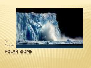 Polar Biome