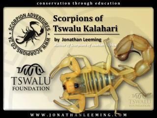 Scorpions of