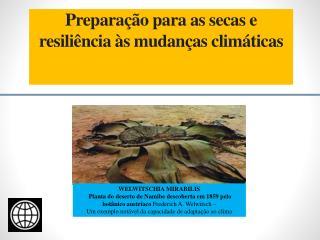 Preparação  para as secas e resiliência à s  mudanças climáticas