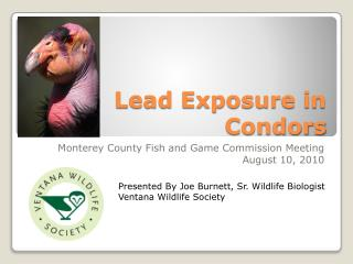 Lead Exposure in Condors