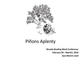 Piñons  Aplenty