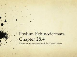 Phylum Echinodermata Chapter 28.4