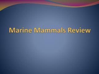 Marine Mammals Review