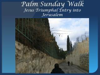 Palm Sunday Walk Jesus Triumphal Entry into Jerusalem