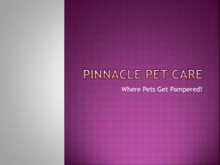 Pinnacle Pet Care