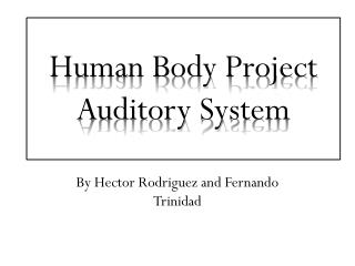 Human Body Project Auditory System