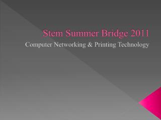 Stem Summer Bridge 2011