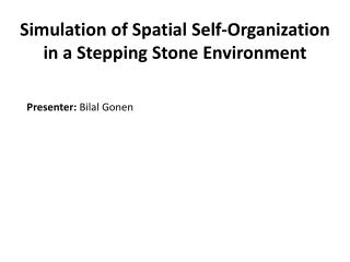 Simulation of Spatial Self-Organization in a Stepping  Stone Environment