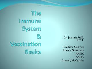 The  Immune System  &           Vaccination Basics
