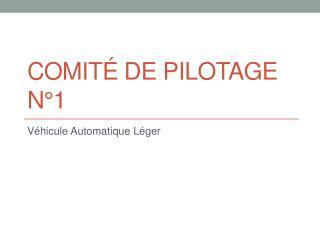 Comité de pilotage N°1