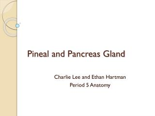 Pineal and Pancreas Gland