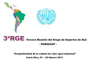 3ªRGE Tercera Reunión  del  Grupo  de  Expertos  de  ALC - PARAGUAY -