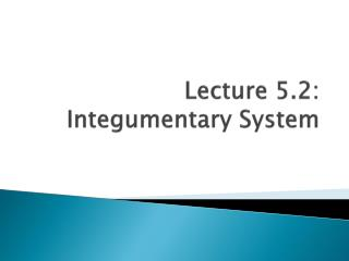 Lecture 5.2:   Integumentary  System