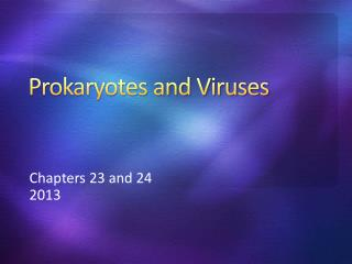 Prokaryotes and Viruses