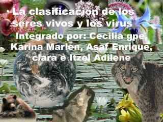 Integrado por: Cecilia  gpe , Karina Marlen,  A saf Enrique, clara e Itzel  A dilene