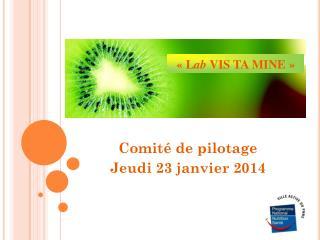 Comité de pilotage  Jeudi 23 janvier 2014