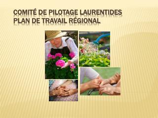 Comité de pilotage Laurentides Plan de travail régional