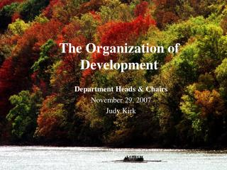 The Organization of Development