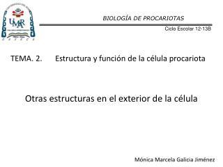 TEMA. 2.Estructura y función de la célula procariota