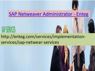 Enteg SAP Netweaver Administrator