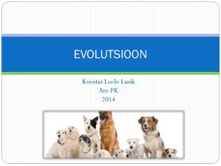 EVOLUTSIOON