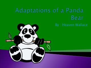 Adaptations of a Panda Bear