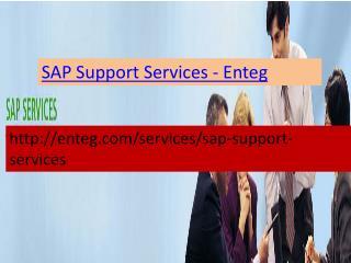 Enteg SAP Support Services