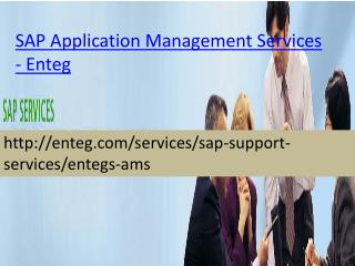 Enteg SAP Application Management Services