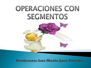 Profesora: Luz María Jara Pereda