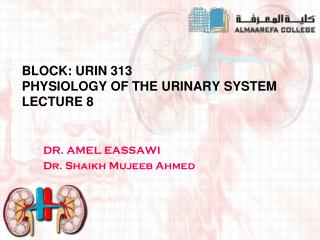 Block: URIN 313 Physiology of THE URINARY SYSTEM  Lecture 8